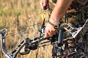 draw weight for bowhunting